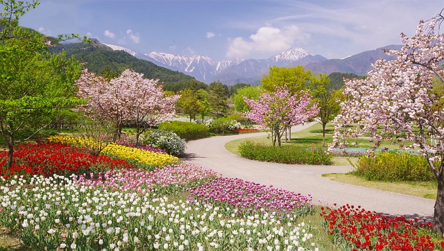 Japanese Alps in the Spring