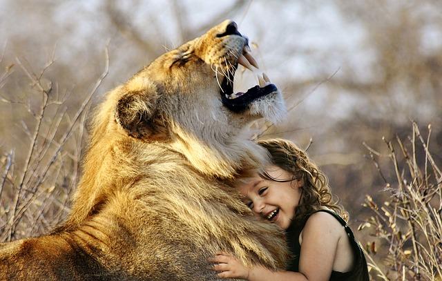 Hugging the Lion